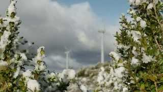 ACCIONA Energía 2014: Securing the future