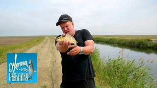 "Карась. ""Охота на рыбалку"" с Вилле Хаапасало 🌏 Моя Планета"