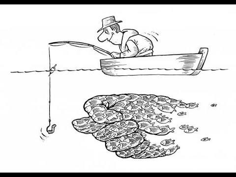 Рыбалка за 500 рублей и пока еще бесплатная река Ока. Fishing for money without result