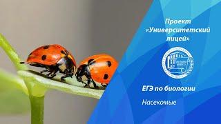 Проект Университетский лицей ЕГЭ по биологии Насекомые