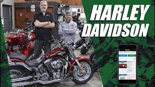 MOTO dicas: o que observar na hora de comprar uma Harley-Davidson