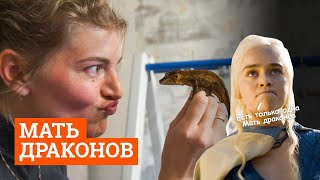 Екатеринбурженка поселила дома больше 40 рептилий