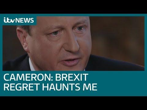 Regretful David Cameron