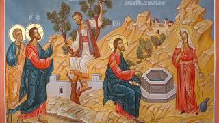 Проповедь о Сергий ОСамарянке 14 05 2017 0001