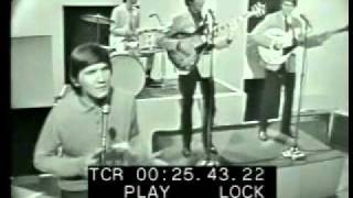 Wayne Fontana & The Mindbenders - Just A Little Bit Too Late (Live)