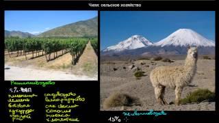 548  Чили сельское хозяйство