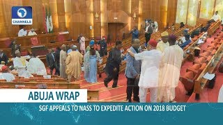 Abuja Wrap: Abuja Airport IPP,Expedition Of 2018 Budget & Benue Killings In Focus |Dateline Abuja|