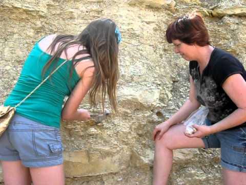 San Antonio roadside fossils - BIG Surprise!!!