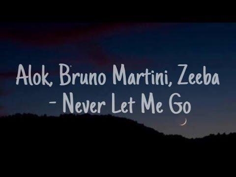Alok Bruno Martini Zeeba - Never Let Me Go •Sub español•