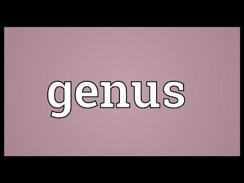 Genus Meaning