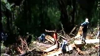 DESTRUCCION AMBIENTAL SAN PEDRO SOLOMA.mp4