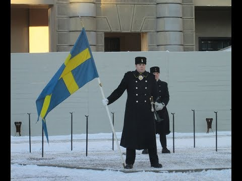 Amazing! Change of the Guard in Freezing Cold! ( Swedish Army Ceremony in Stockholm )