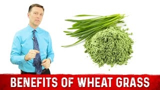 12 Scientific Benefits of Wheat Grass