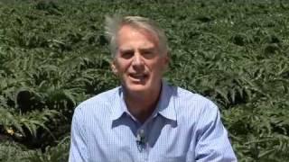 Visit Ocean Mist Farms & Artichoke Choke at Fresh Summit 2011
