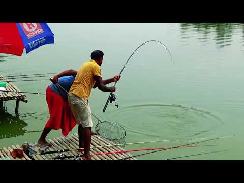 Best Series Fishing Videos By Fishing Rod And Fish Hooks