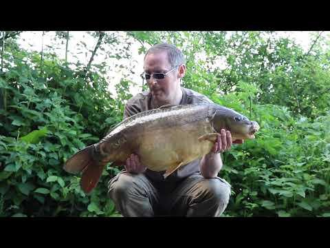 Carp Fishing - The