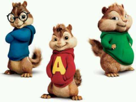 X-Press - Reer | Chipmunks official