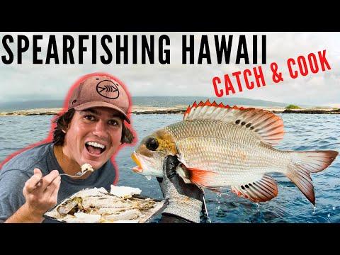 spearfishing-hawaii-mu-catch-and-cook-{and-aquarium-build!}