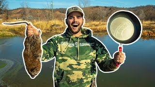 Flooded Farm MUSKRAT TRAPPING!!! (Catch Clean Cook)