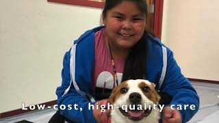 Donations sought for Options Veterinary Care, a nonprofit, low-cost clinic in Reno Nevada