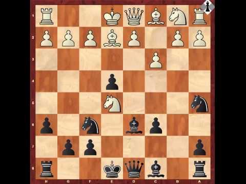 Яр саныч шахматы видео уроки