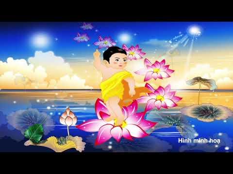 SBTN-DC News: Nhặt Lá Bồ Đề: Lễ Phật Mà Quên Chữ Từ Bi