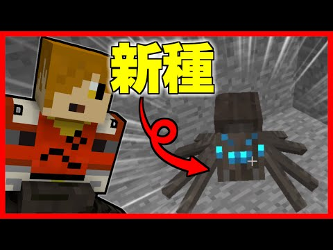 【蜘蛛クラフト】 蜘蛛の女王になって世界を征服する#2【マインクラフト】