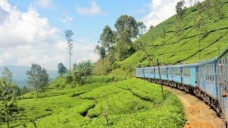 Voyage Solidaire au Sri Lanka - Double Sens