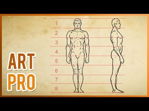 How To Draw The Human Body