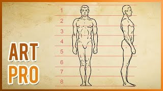 How to draw the human body - Proportions