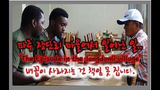 DMZ trip 경기도 파주 3탄! 핵잼주의) 장단콩 마을에서 생긴 일? visit Jangdan bean village.