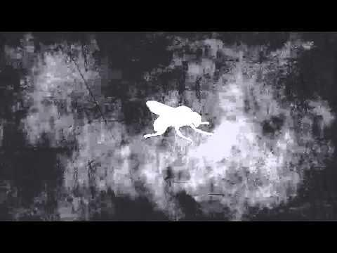 Melodie-Background Hum
