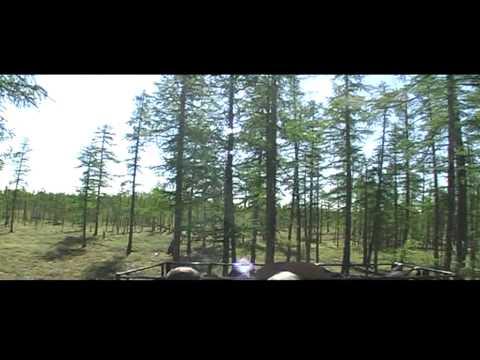 Trip on Mountains Mus-Khaya (Yakutia, summer 2011)