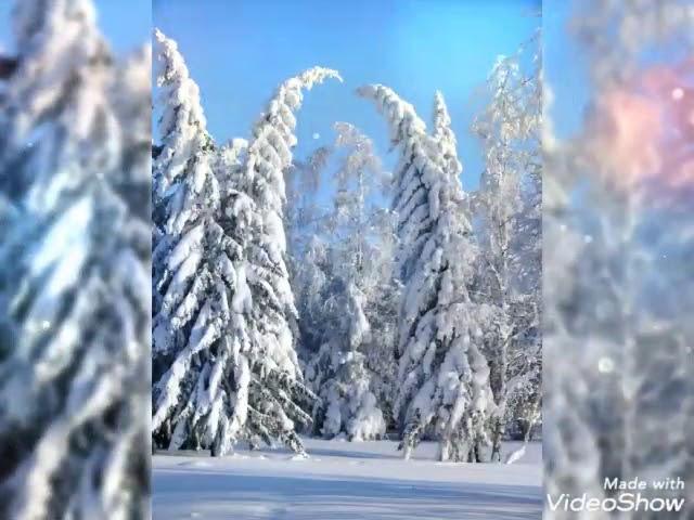 Изображение предпросмотра прочтения – НазгульШагисултанова читает произведение «Поёт зима— аукает…» С.А.Есенина