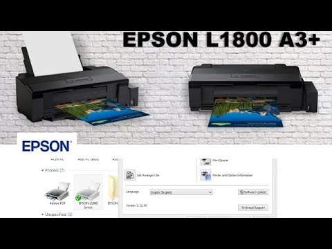 How to Power Flush clean your head for Epson L1800