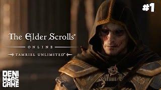 The Elder Scrolls Online - Прохождение #1: Бесплатные выходные