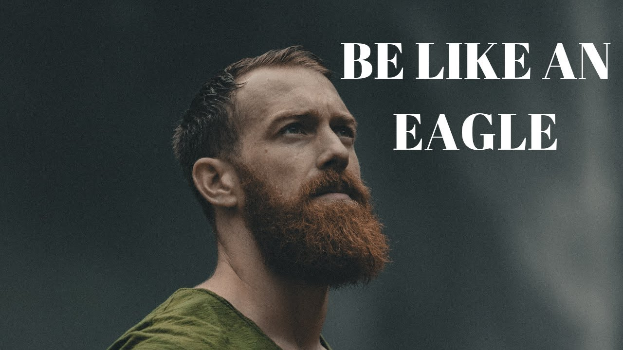 Eagles Do Not Fear Storms. Be Like An Eagle- Best Motivational Video