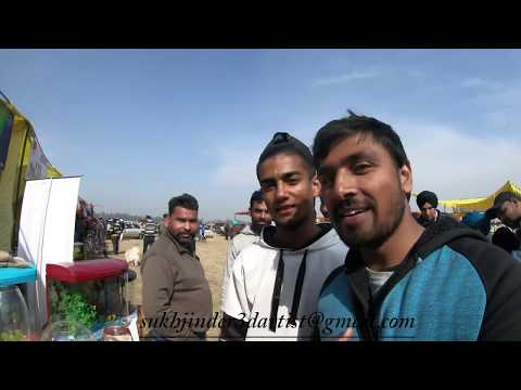 Ludhiana Pet Market -- Jan 2019