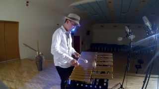 Lullaby of Birdland - Vibraphone cover