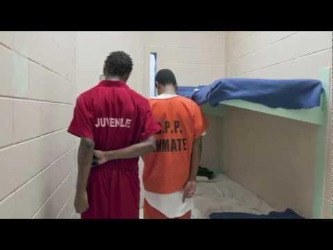 Adolescent Development & Juvenile Justice
