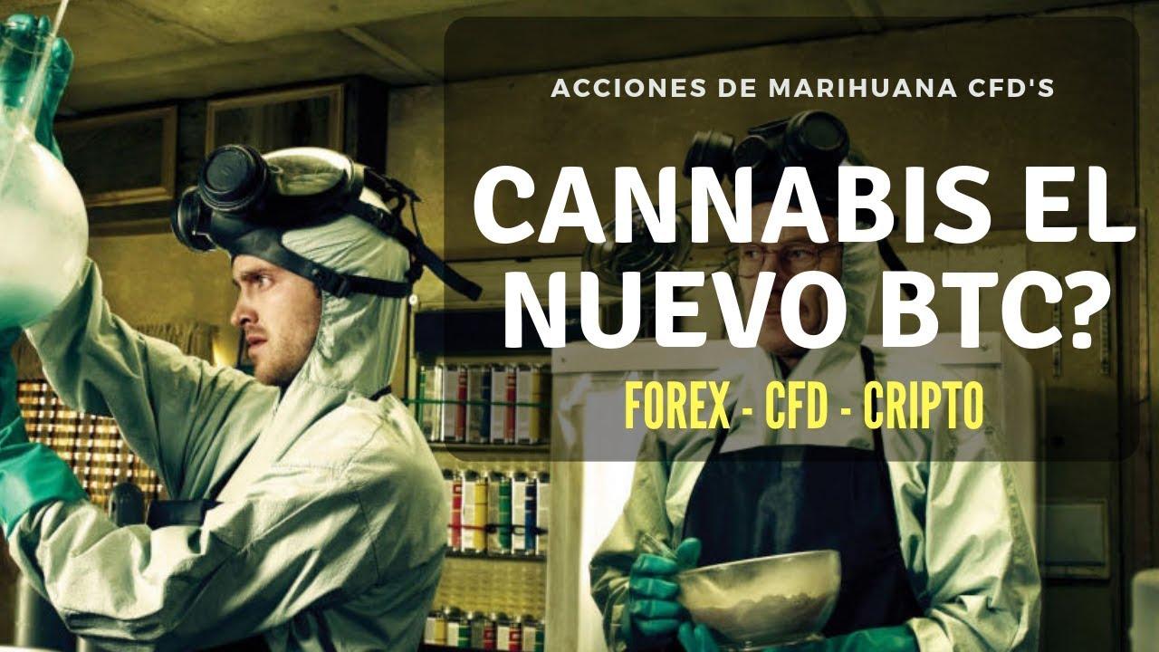 marihuana invirtiendo nuevo bitcoin invertir en grandes cantidades de bitcoins