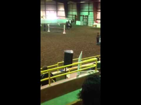 Alice Hunter Under saddle March 9 2013