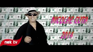 NICOLAE GUTA - AM LIPICI LA MILIOANE [VIN LA MINE VIN] MANELE 2014