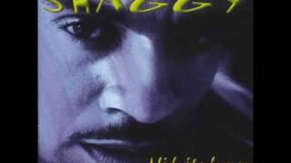 Shaggy - Midnight Lover [Midnight Lover]