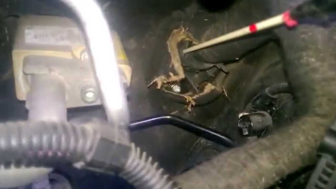 on nissan patrol towbar wiring harness
