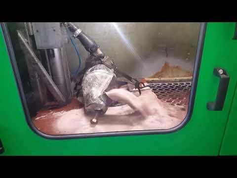 Dpf cleaning ni using Flashcleaner