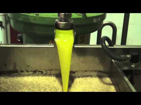 布達馬爾它漂亮流出的橄欖油~
