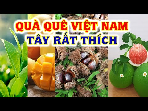 Top 15 Nông Sản Nổi Tiếng Việt Nam Được Thế Gới Ưa Chuộng Nhất