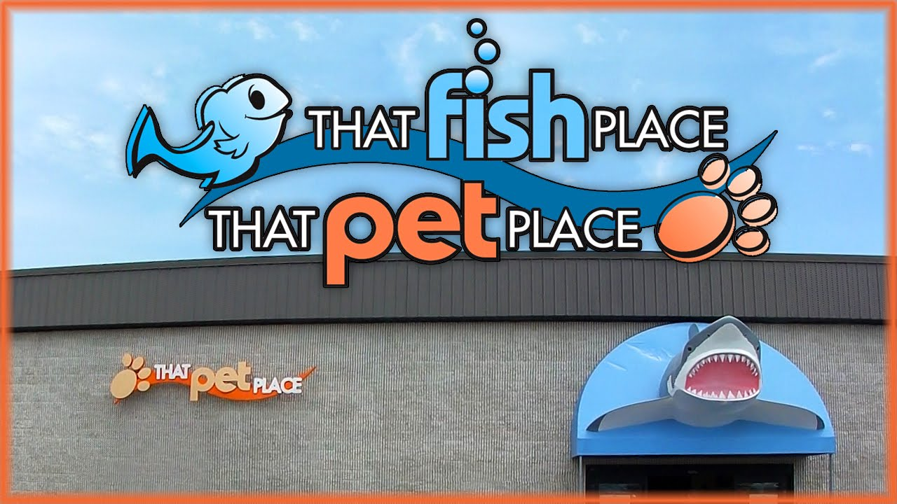 That fish place that pet place vlog youtube for That fish place that pet place lancaster pa