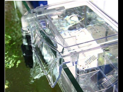 Скиммер в пресноводном аквариуме и пневматический отсадной мини аквариум